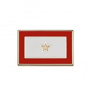 Gold Star Pin