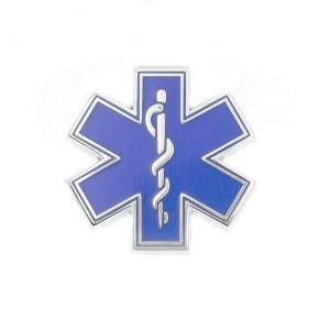 Blue Star of Life Pin
